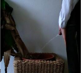 fussfetisch berlin dildo arsch